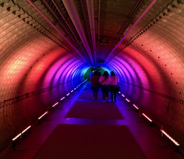 rainbow tunnel at nybg photo by gail