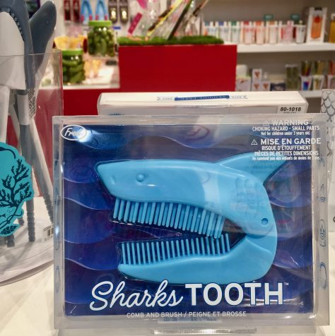 sharks tooth folding comb and brush by fred photo by gail worley