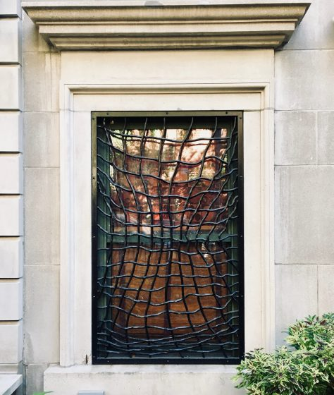 spider web window guard photo by gail