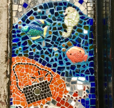 aquarium and camera mosaic photo by gail worley