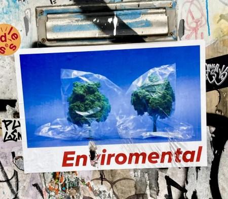 environmental photo by gail worley