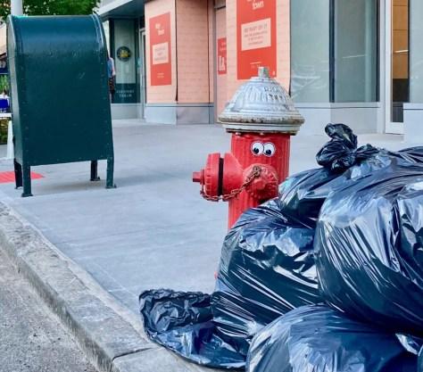 googly eye fire hydrant 2 photo by gail worley