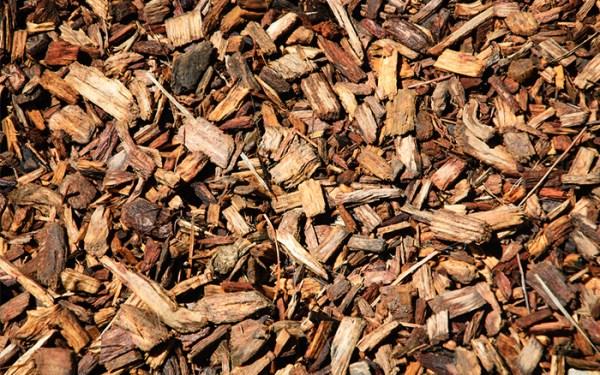 wood chips worm composting - wormfarmguru