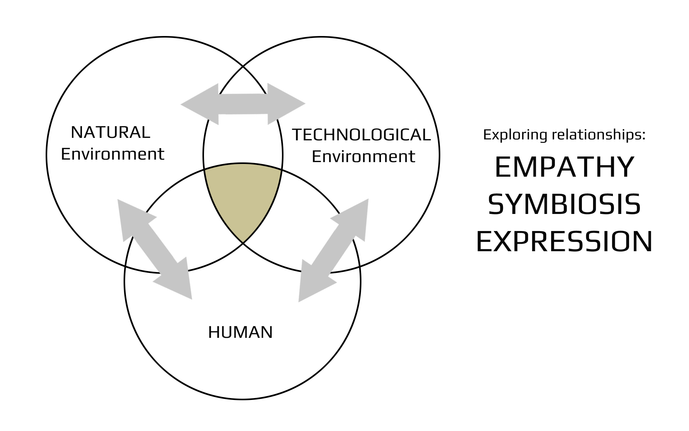 Project Update 3 Of Empathy Symbiosis Expression And