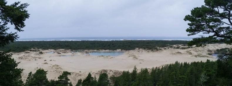 Le point de vue en haut des dunes