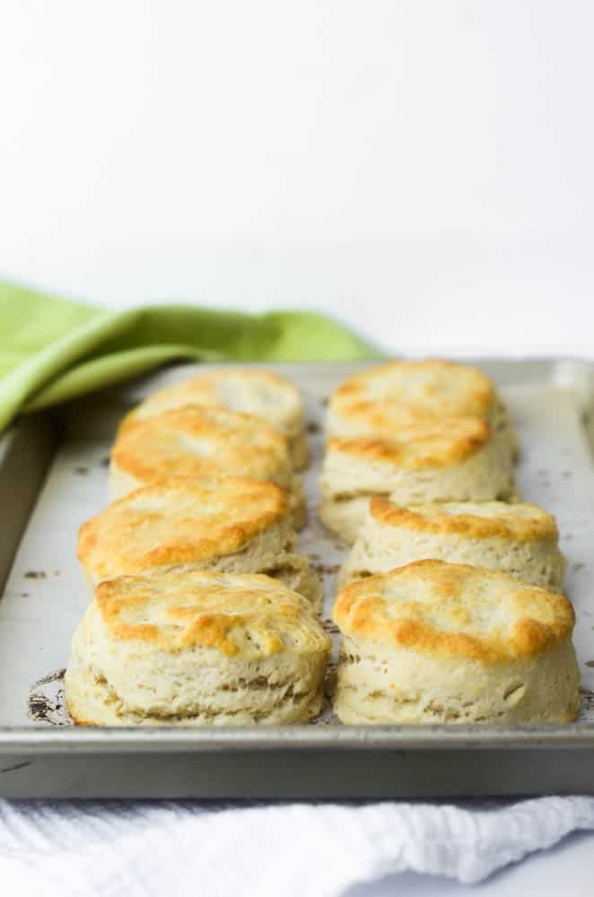 front view of 8 southern buttermilk biscuits on baking tray