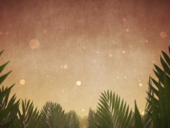 sunday palm epic backgrounds worship motion branches views 2769
