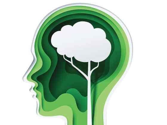 Illustration of a tree growing inside brain