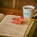 book open from pixabay