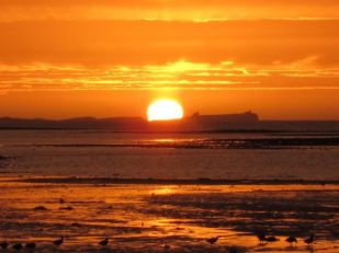 Sunrise at Holy Island UK, byAna Gobledale