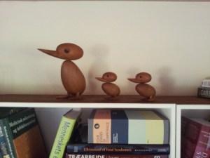 Ducks2__1441918636_87_55_214_56
