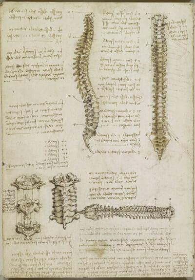 Back Pain Breakthrough program