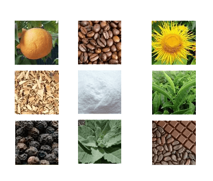 skald oxydynamic fat scorcher ingredients