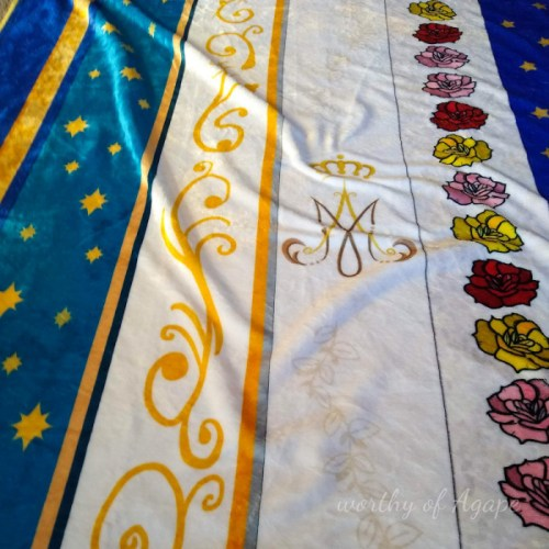 Our Lady Mantles super close up Mary