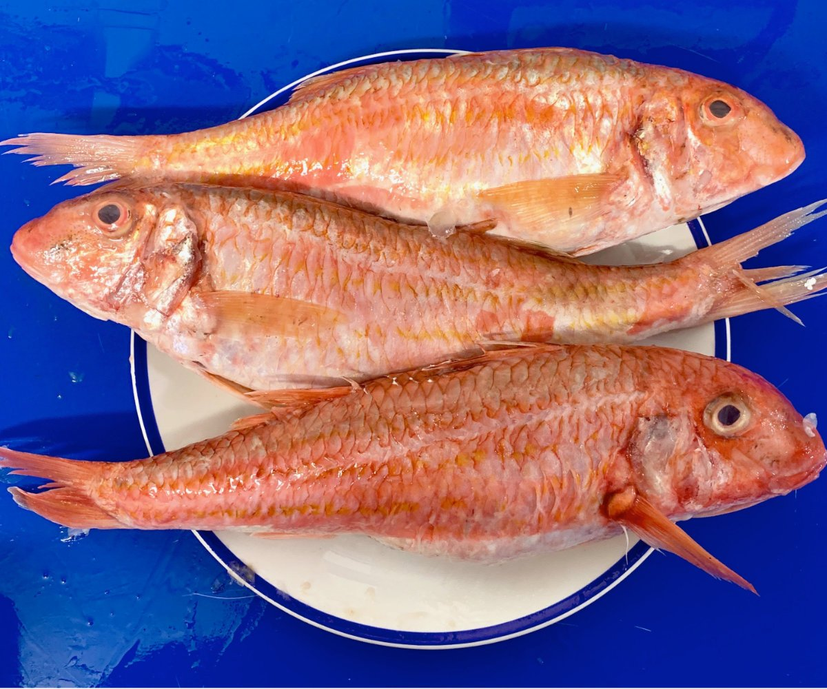 Delicious Cornish Red Mullet