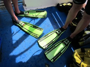 Fins: not life saving equipment, but you can never have too much gear.