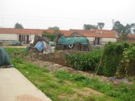 Village Crops: small crops are grown in any available space in or around the villages.