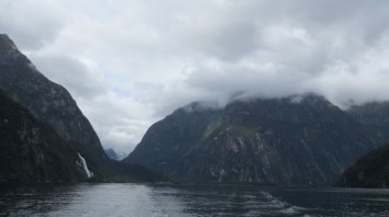 One of many waterfalls seen on a cruise of Milford Sound.