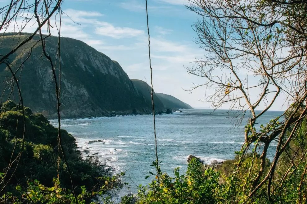 2 weeks in South Africa: The Garden Route
