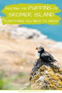 Everything you need to know about meeting the puffins on Skomer Island, from what to bring, when to go and how to get there.