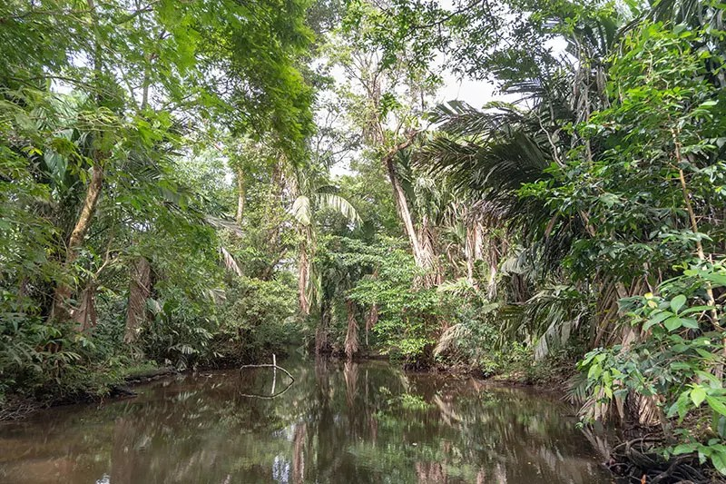 Would Be Traveller 10 days in Costa Rica itinerary Tortuguero