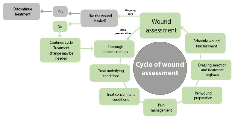 wound assessment diagram tattoo power supply how to why continuity and documentation is so important initial only the beginning