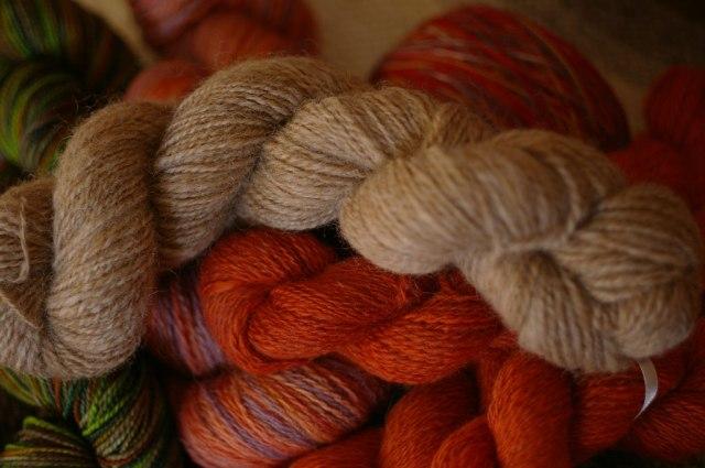 brenda-wool