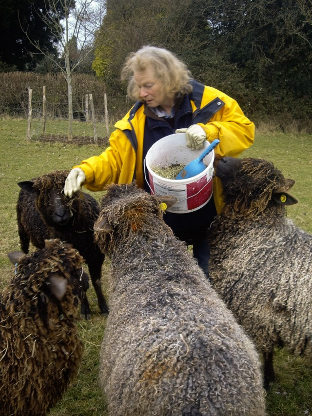 Julia Desch, shepherd and inspirational force behind Woolcraft with Wensleydale - one of many small producers whose work paves the foundation for the British Wool industry