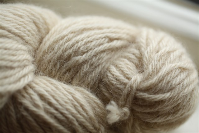 ...so different from a skein of Teeswater from Darrell and Freda Pilkington