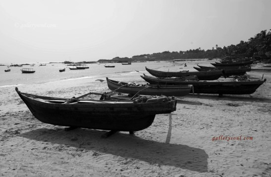 BoatS waiting to go for Rides - on the Konkan coast of the Arabian sea India