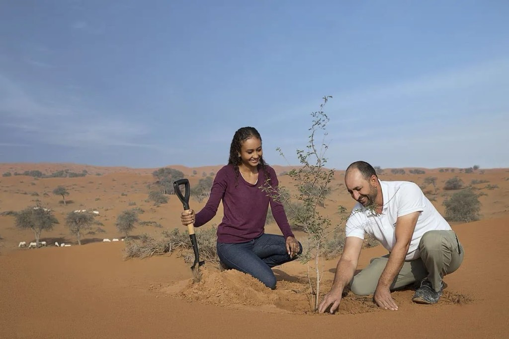 Tree planting programme launched in Ras Al Khaimah