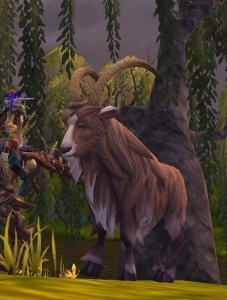 Tameable Pets Wow : tameable, Gruffhorn, Hunter, World, Warcraft