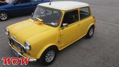 Mini Yellow Side