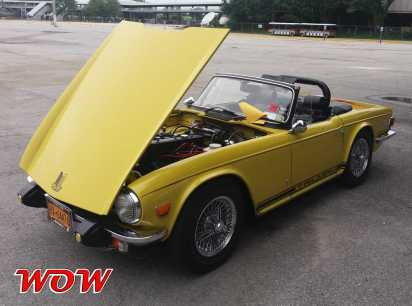 Yellow Triumph Left Front