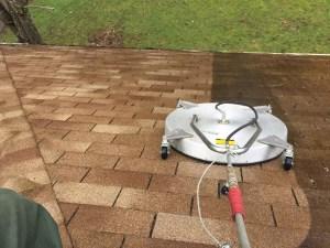Roof Shampooer in Delaware