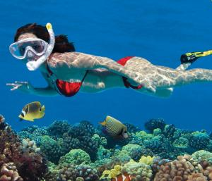 underwater snorkling at beach with a ft. lauderdale limousine