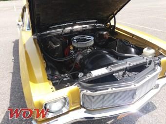 1970 Chevrolet Monte Carlo - Engine