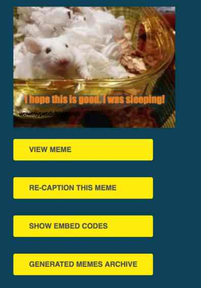 screenshot of pet meme generator