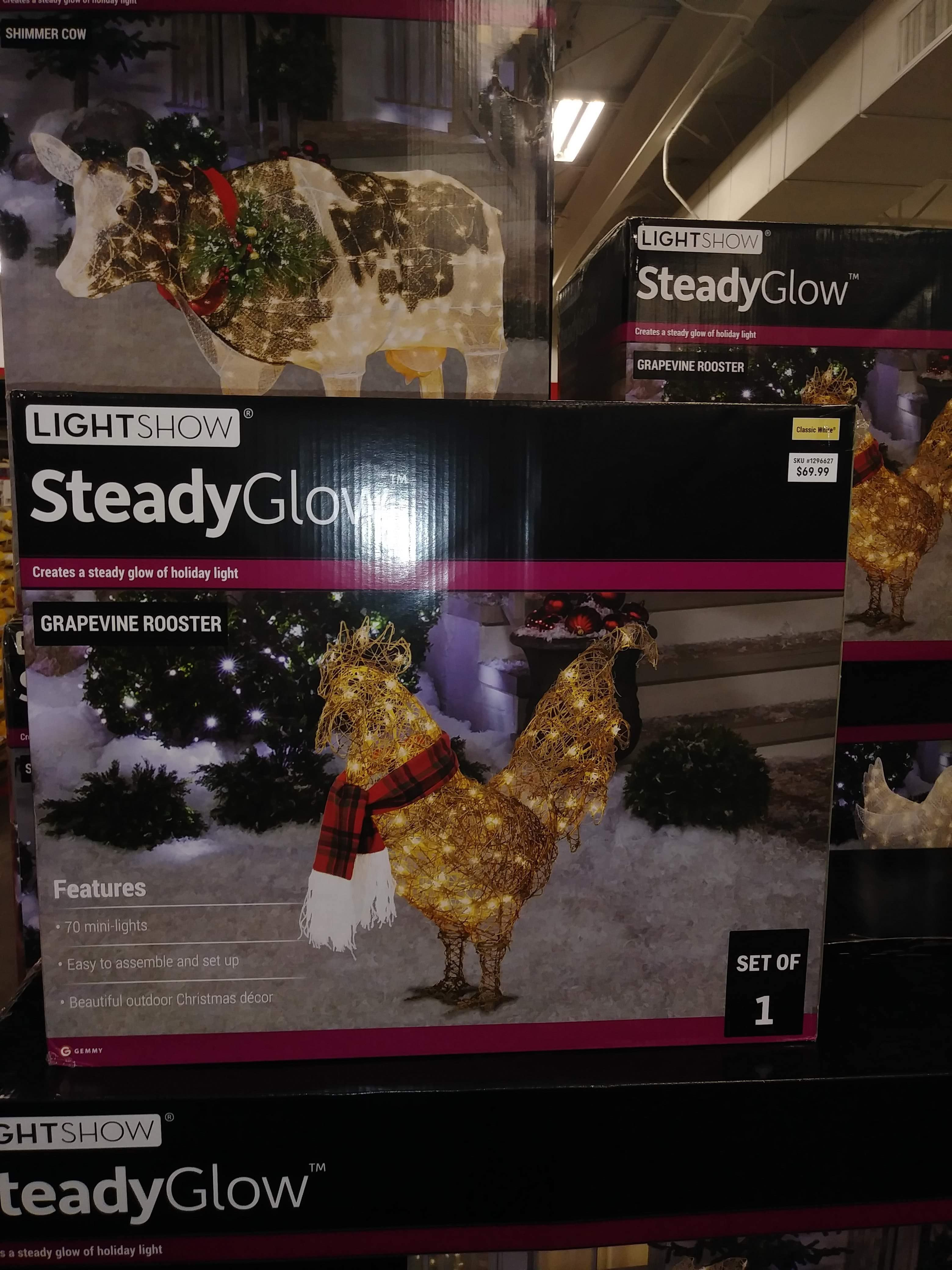 Outdoor Holiday Rooster And Hen Light Decorations Wow My Pet Did That