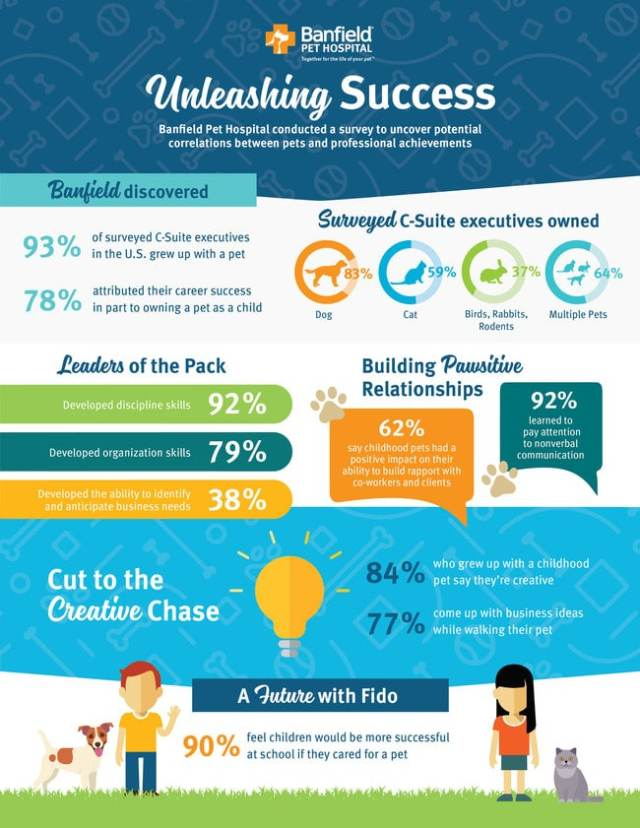 Unleashing success infographic