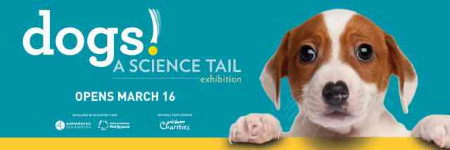 Science Tail ad
