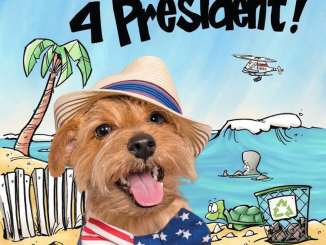 Gizmo for president book cover