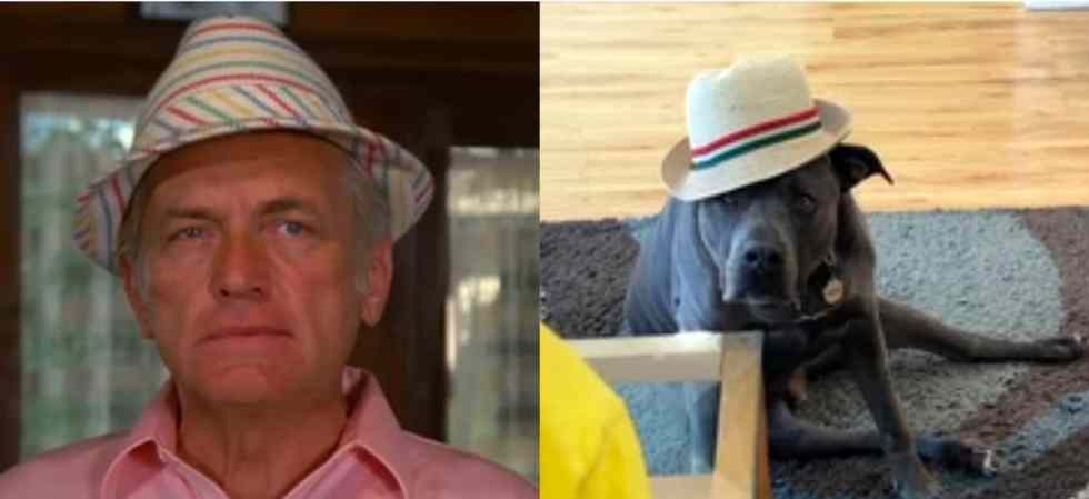 Split screen: Ted Knight and Ricky