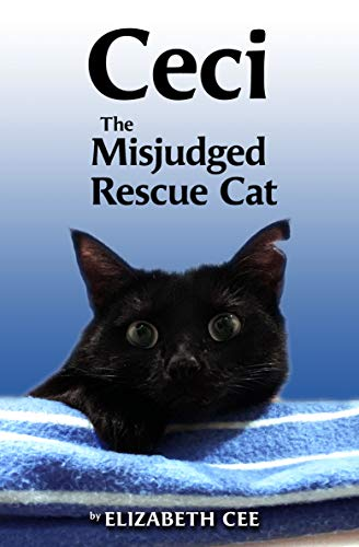 Ceci: The Misjudged Rescue Cat