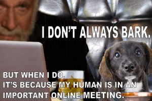 I Don't always bark, but when I do my human is on an important online meeting meme