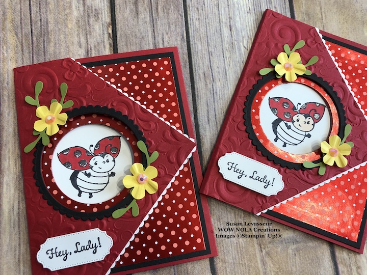 Little Ladybug Peek-a-Boo Fancy Fold