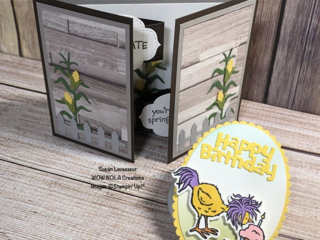 Double Fancy Fold, Hey Chick, Susan Levasseur, WOW NOLA Creations, Stampin' Up!