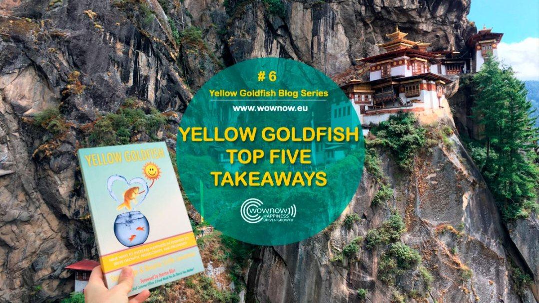 Yellow Goldfish series #6: Yellow Goldfish Top Five Takeaways