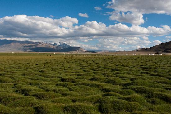 Lo scenario natuale che circonda un accampamento di falconieri negli Altai