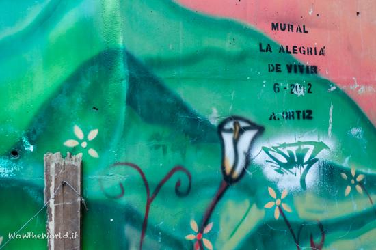 Graffiti Medellin picture by Giorgiana Scianca